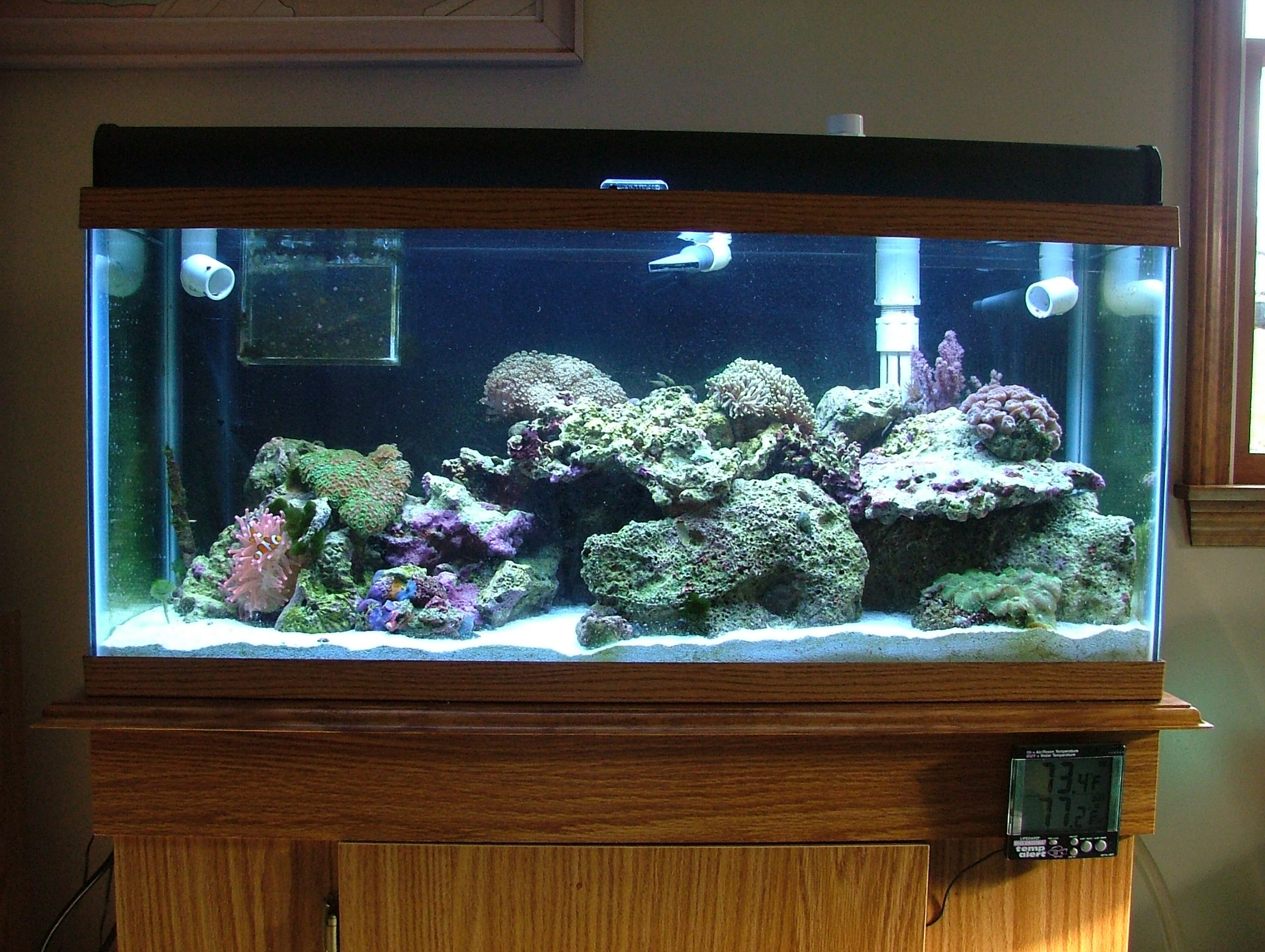 30 gallon reef tank