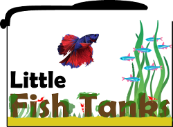 LittleFishTanks Logo